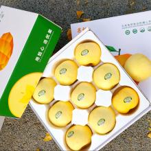正大食品 黄金富士有机苹果 5斤 [5kg]