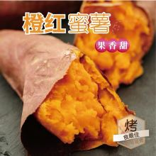 【小汤山】橙红蜜薯 红薯5斤宅配装 新鲜蔬菜 安全可追溯 顺丰到家