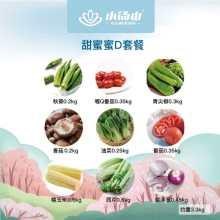 【小汤山】甜蜜蜜蔬菜礼盒 四种套餐 9种蔬菜 当日采摘顺丰包邮 约2.4-3.8KG