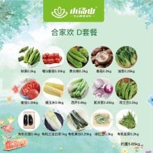 【小汤山】合家欢蔬菜礼盒 四种套餐 15种蔬菜 当日采摘顺丰包邮 约4.45-6.6kg