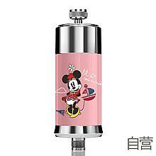 民生电商自营 Disney 迪士尼 美国迪士尼沐浴净水器自来水淋浴洗澡过滤净化家用除氯花洒Disney-Mickey-10D [米妮]