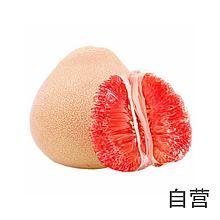 民生电商自营 维多丽三红柚 [1粒]