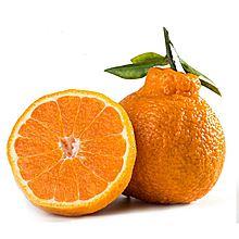 民商智惠 【水果】云南丑橘 [1kg]