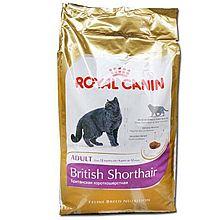 ROYAL CANIN 法国皇家 (台湾版) 法国原装进口 BS34 英国短毛成猫粮 美短 蓝猫猫粮 4KG