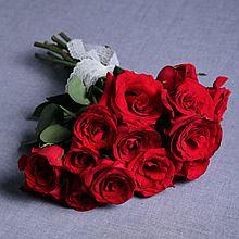 民商智惠 泰笛鲜花 单品包月鲜花 一周一花首单送花瓶 月送4次 [8-10支]