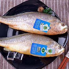 三都港 无公害黄花鱼(两条装) 600g