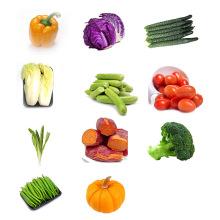康顺达 农家蔬菜 礼盒B 新鲜蔬菜 [5kg]