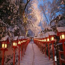 乐活の日本 6晚7