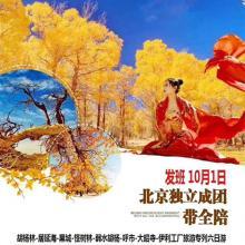 十一专列 金色胡杨 北京成团出发